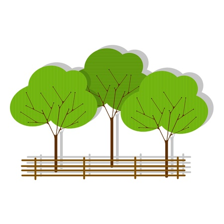 plant tree: Green forest made of paper, isolated and grouped objects over white background