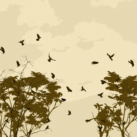 Abstract nature background with birds and tree silhouettes Stock Vector - 16796472