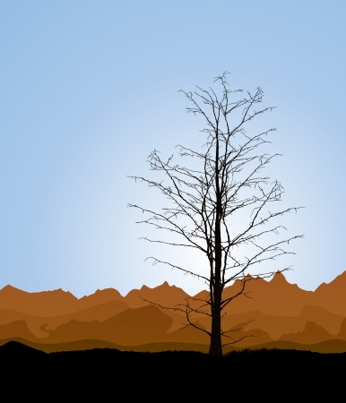 Environmental background with a dead tree silhouette Stock Vector - 17886710