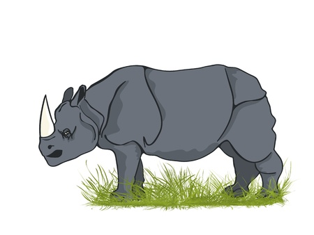Large rhinoceros bull in the grass, cartoon art Vector