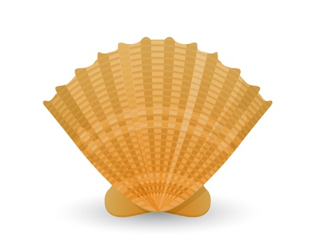 oceanic: Shell icon over white background