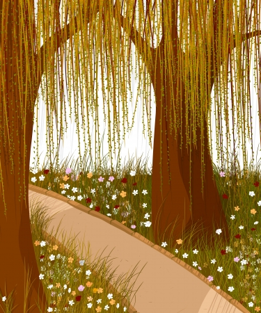 Willow forest and alley  Romantic background  Vector