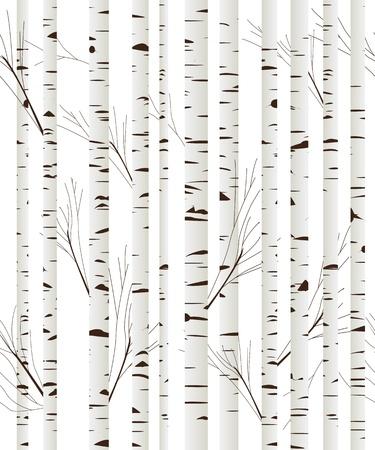 arboles blanco y negro: Patr�n transparente, fondo con �rboles de madera de abedul sobre fondo blanco