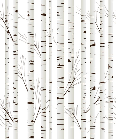 Seamless pattern, background with birch wood trees over white background