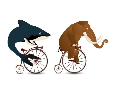 mammoth: Cartoon style drawing of a mammoth and a whale racing on bicycles