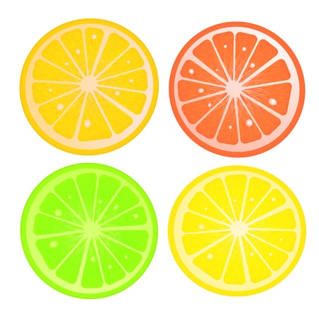 citric: Various citric slices against white background