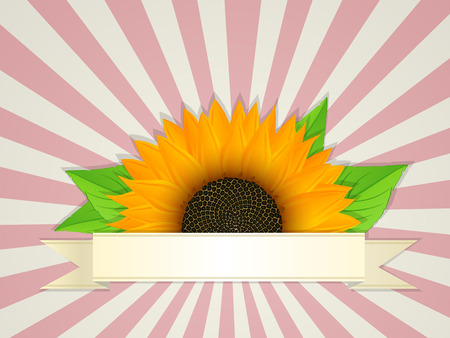 incision: Summer banner design with graphic sunflower