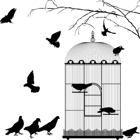 jail bird: Birdcage and birds silhouettes over white background Illustration