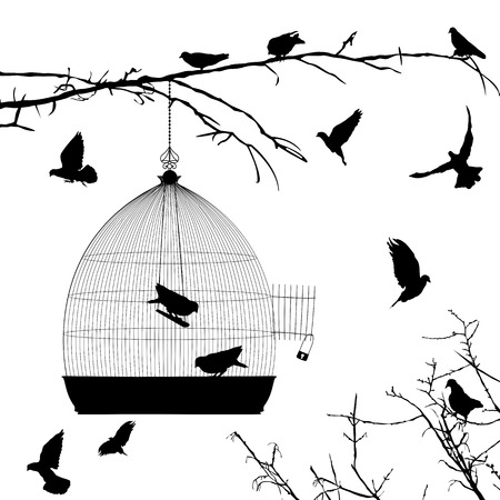 jail bird: Birds silhouettes and bird cage over white background Illustration