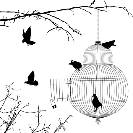 jail bird: Open cage and birds silhouettes over white background Illustration
