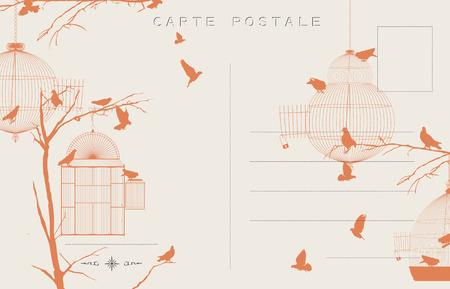 jail bird: Vintage postcard with birds and bird cages