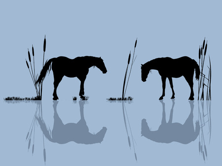 trotter: Background romantic illustration with horses at the water Illustration