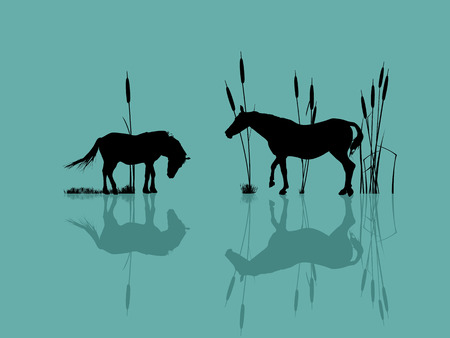 stirrup: Background romantic illustration with horses at the water Illustration