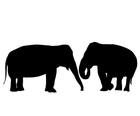Two elephants love card, isolated objects on white background Vector