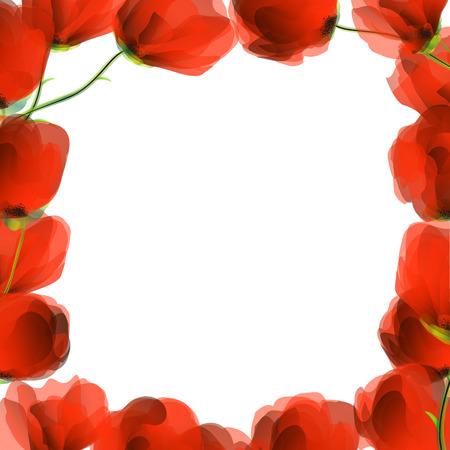 Red poppies frame design for text of images Illustration