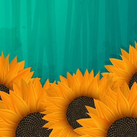 Sunflowers icon, vector art