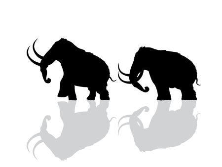 Wooly mammoth silhouettes over white background