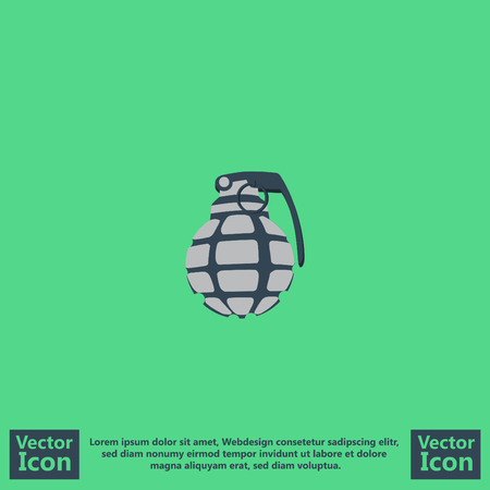 Flat style icon with grenade symbol