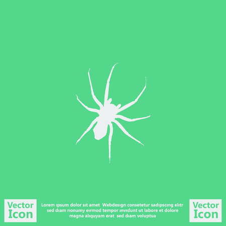 Flat style icon with spider symbol
