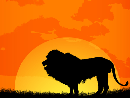 alone in the dark: African sunset with lion silhouette Illustration