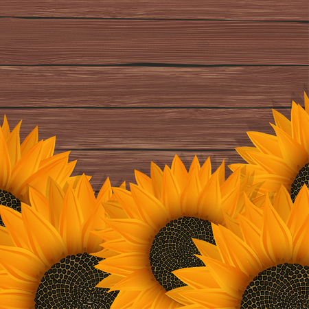 Delicate sunflowers on red wood