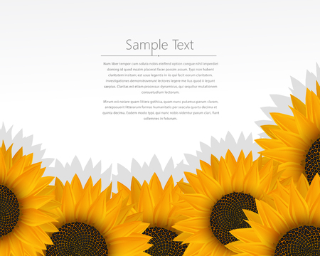 Vector template design with sunflowers Illustration