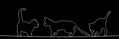 Outlined cat silhouettes over black Illustration