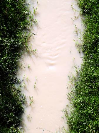 turbid: Polluted water stream. Stock Photo