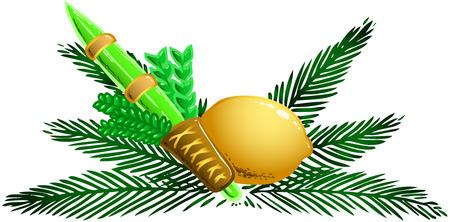 sukkot: Illustrazione vettoriale di quattro specie per la festa ebraica di Sukkot Vettoriali