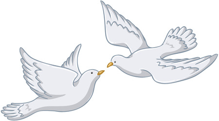 Vector illustration of two white pigeons flying together.