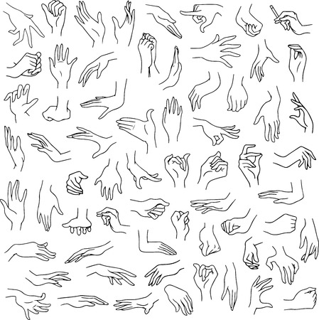 hand up: Vector illustration line art pack of woman hands in various gestures