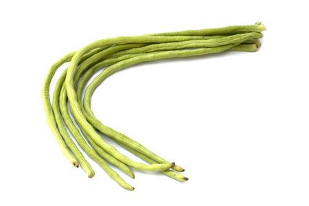 Yardlong bean isolated on the white background photo