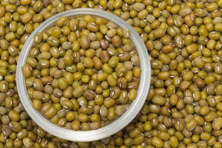 mung bean: Mung bean close up