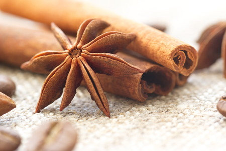 Cinnamon, anise and nuts Stock Photo