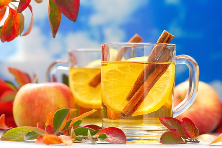 apple and cinnamon: Hot drink with apple juice, lemon and cinnamon in autumn decoration