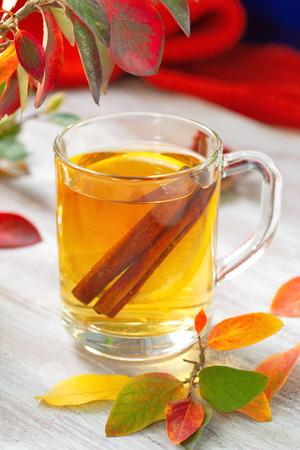 vin chaud: Boisson chaude avec du jus de pomme, citron et la cannelle � l'automne