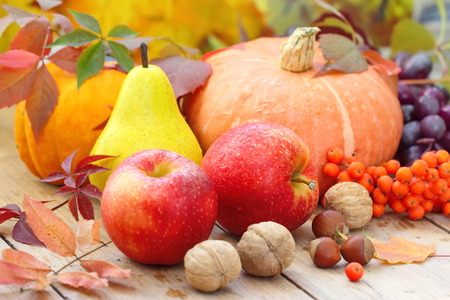 Herbst-Stillleben mit Früchten, Gemüse, Beeren und Nüsse Standard-Bild - 46043558