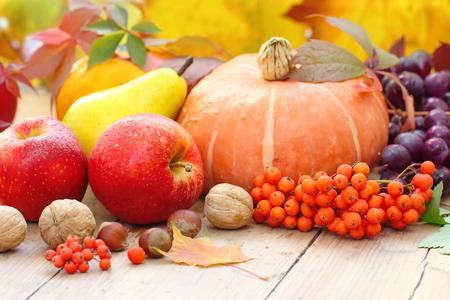 obst und gem�se: Herbst-Stillleben mit Fr�chten, Gem�se, Beeren und N�sse