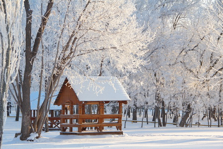 Wooden arbor in winter snowy forest