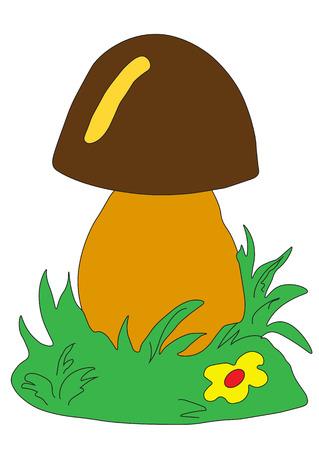 Mushroom on a white background Illustration