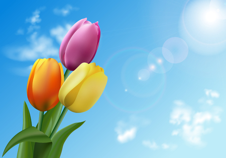 Tulips on sky background at a sunny day. Bouquet of spring tulip flowers on natural background Stock Illustratie