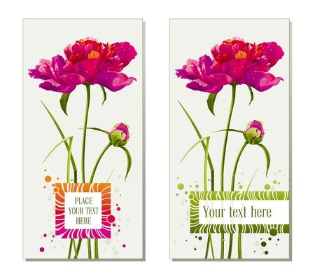 saludo: Tarjetas de felicitaci�n florales con flores de peon�a Roja y bud Vectores