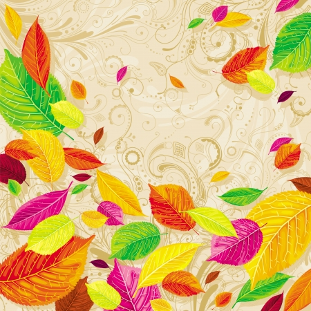 Brightly colored autumn leaves on the floral background