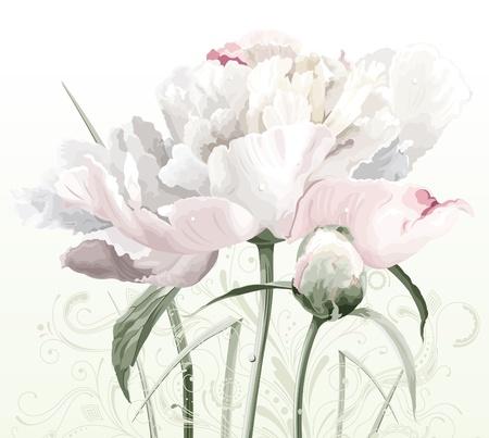 pfingstrosen: Luxuriöse Weisse Pfingstrose Blumen malte in Pastelltönen mit Bud und florale Muster