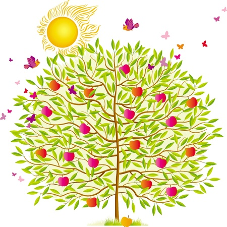 Summer tree with green leaves and red apples Vector