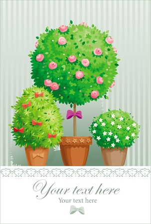 Vintage greeting card with the pot plants collection