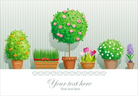 haus garten: Vintage-Gru�karte mit dem Topfpflanzen Sammlung Illustration