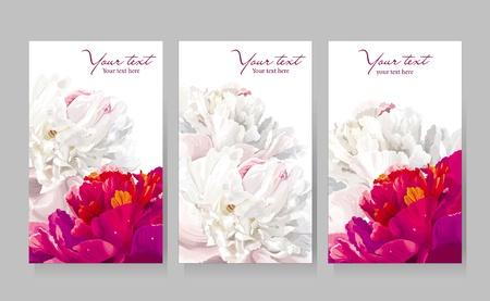 Bloemen wenskaarten met rode en witte pioen bloemen Stock Illustratie