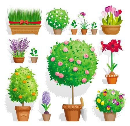 Set van potplanten met bloemen en bladeren