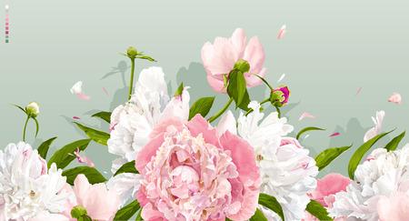 Luxe roze en witte pioenrozen achtergrond met bladeren en knoppen